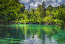 Clean, Transparent Turquoise Pond And Green Mossy Hill With Waterfalls. Green Lush Forest, Plitvice Lakes National Park UNESCO World Heritage, Croatia