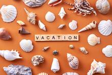 Summer Vacation Concept. Many Various Seashells On Orange Background.