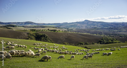 italian landscape #406955417