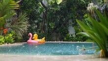 Rain Season. Lonely Giant Inflatable Floats In The Private Swimming Pool Of Tropical Villa