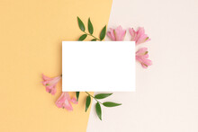 Floral Frame Made Of Alstroemeria Flower On A Beige And Gold Background. Empty Paper Card Mockup. Springtime Concept For 8 March Or Mothers Day.