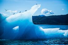 알래스카 빙산