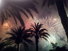 Spectacular Fireworks Over Palm Trees At Night In The French Riviera