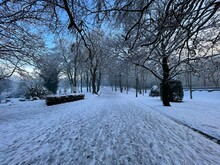 Winter View Down, Lister Park, With Old Trees, And A Blue Sky In, Bradford, Yorkshire, UK