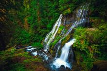 Panther Creek Falls, Gifford Pinchot National Forest, Wasington