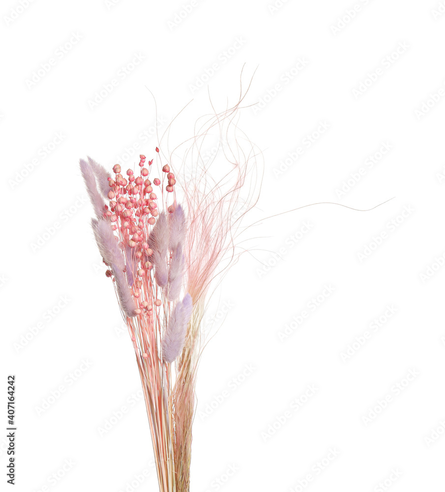 Fototapeta Bouquet of dried flowers on white background