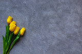 Fototapeta Tulipany - Yellow tulips on grey background. Copy space for text and Trendy color 2021.