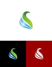 Luxury And Simple Swan Swim Vector Logo