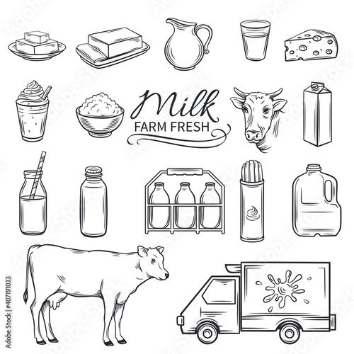 Fotografie, Obraz Set Hand drawn decorative milk icons