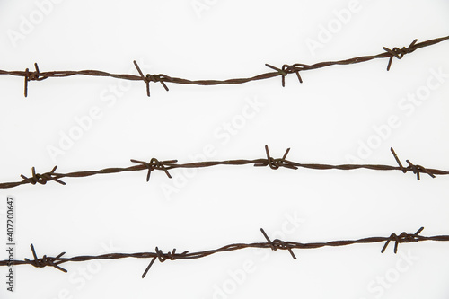 Canvastavla Barbed wire on a white background.