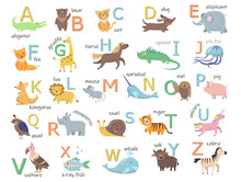 Colorful Zoo Alphabet With Cute Animals Flat Illustration Set