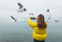 A Young Girl In Yellow Jacket Takes Off Flying Seagulls By The Sea. Photo On The Phone. View From The Back.