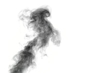 Curly Smoke, Smog, Looks Like A Black Bird On A White Background, Copy Space, Close-up. Inverted Frame. Abstract Background, Design Element, For Superimposing On Images