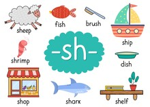 Sh Digraph With Words Educational Poster For Kids. Learning Phonics For School And Preschool. Phonetic Worksheet. Vector Illustration