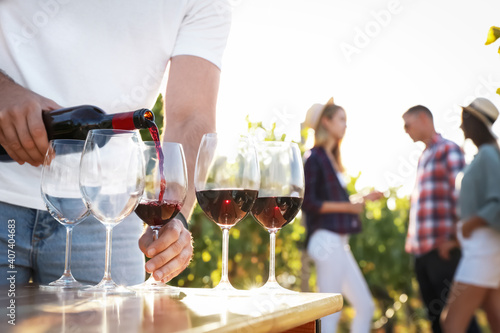 Man pouring wine from bottle into glasses at vineyard, closeup © New Africa