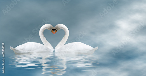 Fototapety, obrazy: Valentine's Day with two swans on a blue haze background
