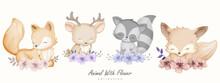 Cute Animal Fox Raccoon Deer With Flower Collection