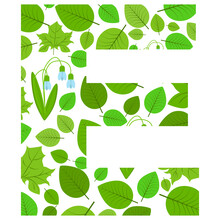 Vector Letter E Of Spring Fresh Green Leaves And Flowers. An Illustration On The Subject Of The Alphabet.