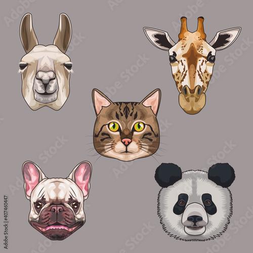 Fototapeta premium bundle of five animals domestics and wild set icons