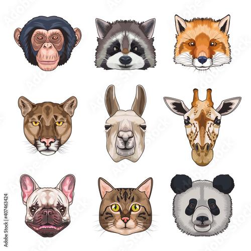 Fototapeta premium bundle of nine animals domestics and wild set icons