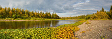Panorama Of The Northern Taiga River.