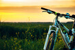 Close-up of mountain bike stands in the rural green field at summer evening. Cycling adventure and summer leisure time