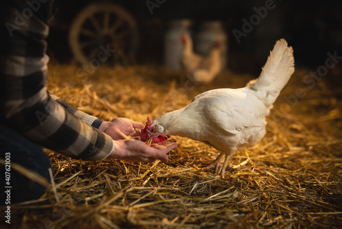 Canvas Print Cinematic shot of young happy female farmer with glass of fresh just produced biological milk used for genuine dairy products industry is smiling in camera in cowshed stable of countryside dairy farm