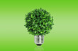 green idea and growth