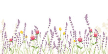 Lavender And Summer Flowers. Vector Illustration, Narrow Banner With Wildflowers, Background For Postcard