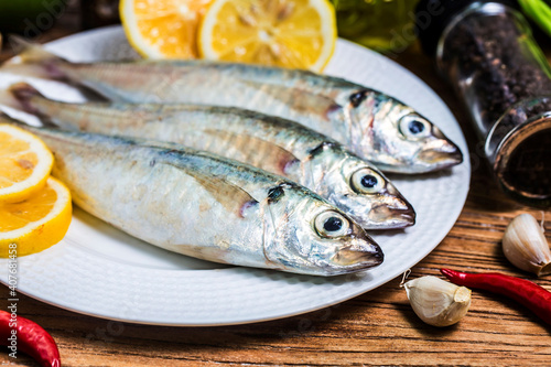 Obraz na plátně round scad fish (1)