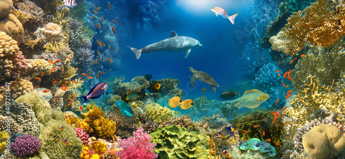 Canvas Print underwater paradise background coral reef wildlife nature collage with shark man