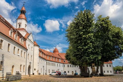 annaburg, deutschland - schloss mit denkmal von anna kurfürstin von sachsen © ArTo