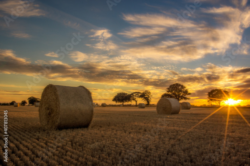 Fototapeta Vast field with haystacks during the beautiful sunset