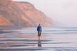 canvas print picture New Zealand coast