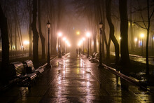 Evening View Of The Alley In The Old Park In Foggy Weather.