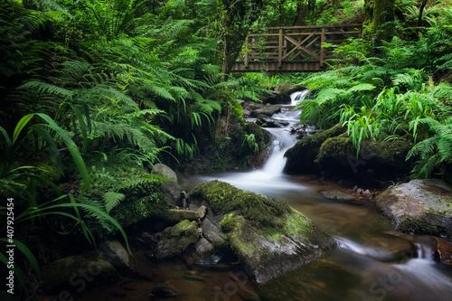 Pequeña cascada en el Río Eifonso