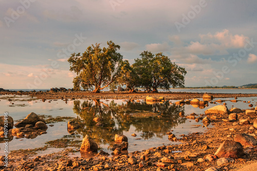 Fotografie, Obraz Sunset ebb beach