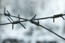 Close Up Of A Barbed Wire Fence