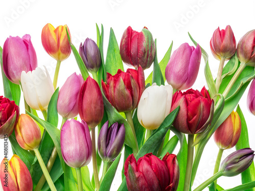 Foto Colorful bouquet of tulips on white background.