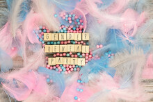 Gender Reveal Party Written With Wooden Cubes Surrounded With Colorful Bright Pastel Feathers For Baby.boy,girl,party,greeting Card Or Background Concept Top View. Copy Space