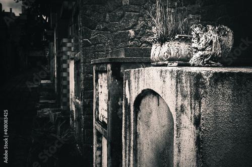 Canvas Cemitério
