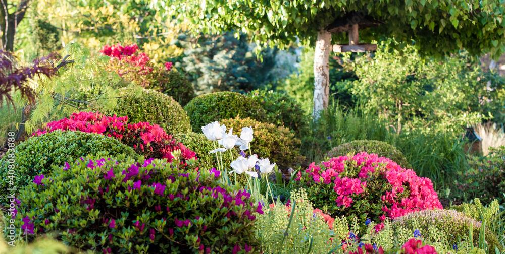 Fototapeta wiosenny ogród, piękny ogród, ogród, garden, beautiful garden, zielony ogród, nowoczesny ogród, ł