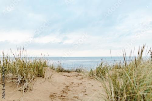 Sand Dunes in Southern Sweden Fototapet