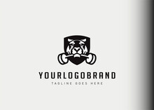 Training Camp Logo Design Inspiration. Tiger Biting A Barbell Vector Illustration. Modern Icon Design Vector Template With Line Style