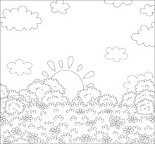 Sun Setting Over A Pretty Field With Wildflowers And A Flittering Butterfly On A Beautiful Warm Evening, Black And White Outline Vector Cartoon Illustration For A Coloring Book Page
