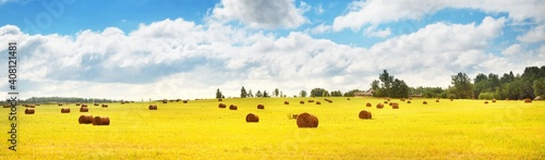 Fotografia, Obraz Agricultural field with haystacks under the clear blue sky with cumulus clouds