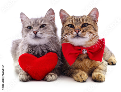 Two cats and red heart. © voren1
