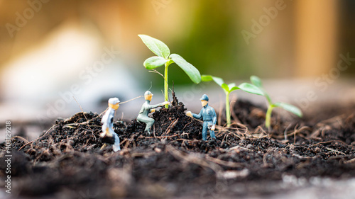Fototapeta Miniature people : Nature exploration team is planting trees for a green world project