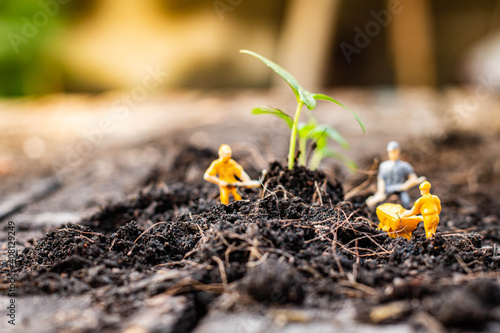 Fotomural Miniature people : Nature exploration team is planting trees for a green world project