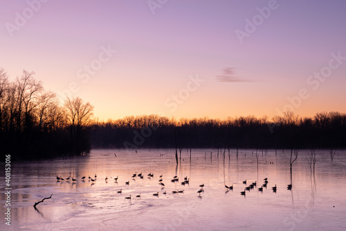 Tablou Canvas Geese on a frozen lake in Indiana